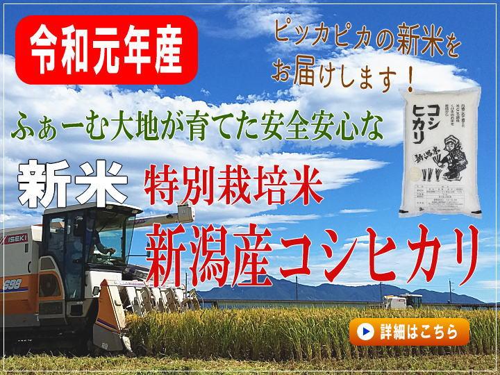 令和元年産 特別栽培米コシヒカリの販売