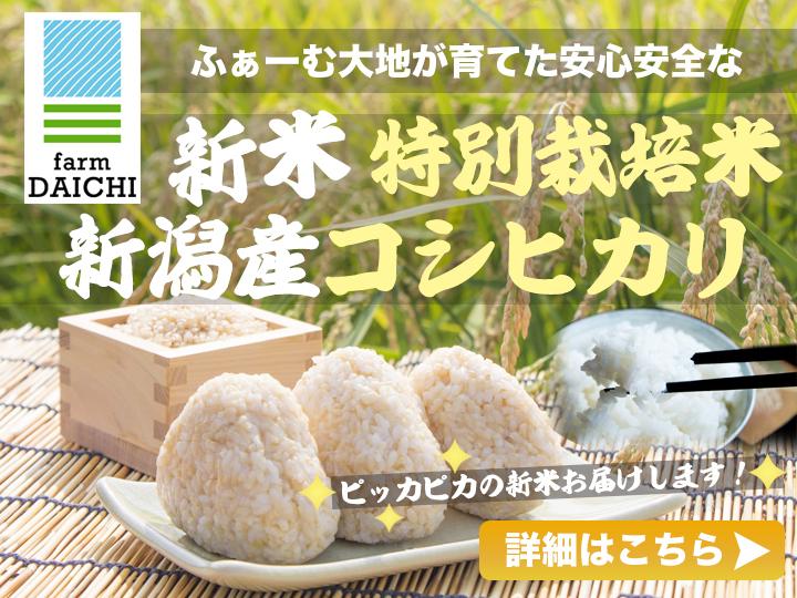 【令和3年産 新米】特別栽培米 新潟産コシヒカリの販売