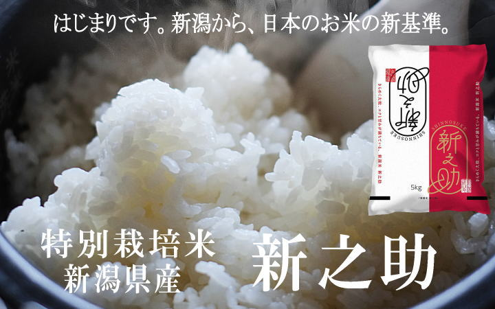 令和元年産 特別栽培米新之助の販売